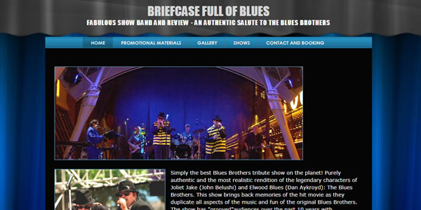homepage image of Briefcase Full of Blues band