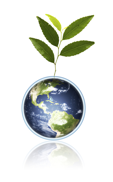 Plant and earth image